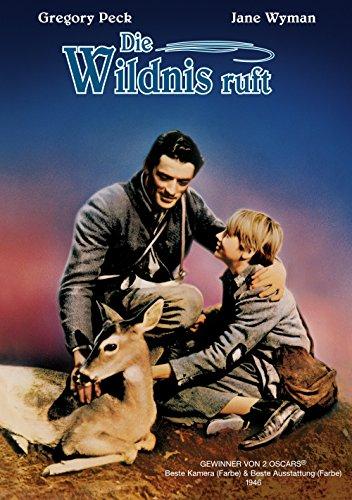 Die Wildnis ruft Film