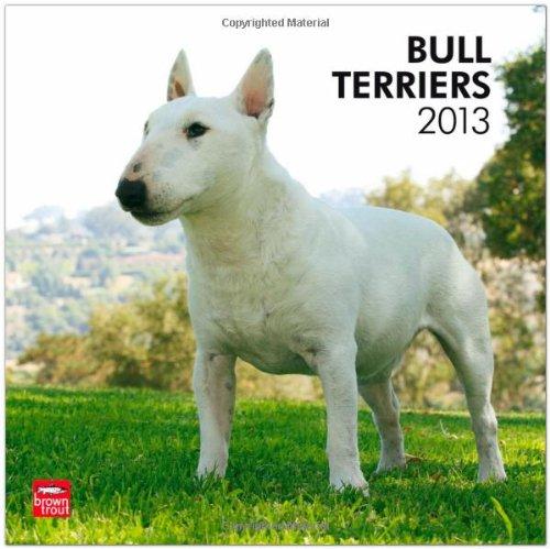 Bull Terriers 2013 - Original BrownTrout-Kalender