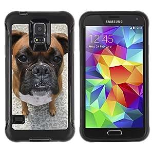 ZETECH CASES / Samsung Galaxy S5 SM-G900 / BULLMASTIFF BOXER DOG PET BREED / bullmastiff boxeador perro animal doméstico raza / Robusto Caso Carcaso Billetera Shell Armor Funda Case Cover Sli