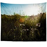 Westlake Art Smart Field - Wall Hanging Tapestry - Picture Photography Artwork Home Decor Living Room - 68x80 Inch (8E6C-E2242)