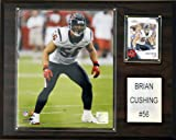 NFL Brian Cushing Houston Texans Player Plaque