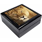 Lioness Keepsake/Jewellery Box Christmas Gift by Advanta - Jewellery Boxes