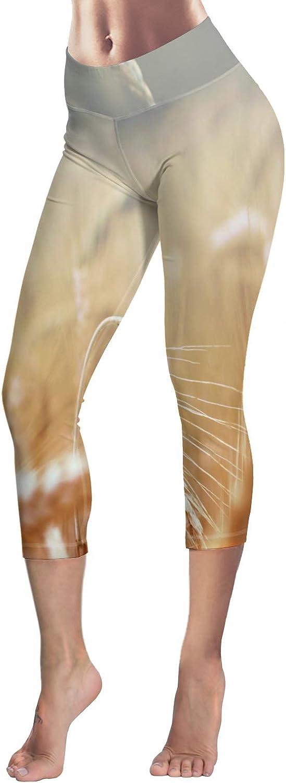 Printed Leggings for Women Cartoon Puppy with Bones 3//4 High Waist Yoga Pants Sport Gym Leggings Workout