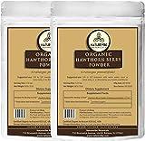 Naturevibe Botanicals Organic Hawthorn Berry Powder (2 lbs - 2 Packs of 1 lb Each) - USDA Organic Certified | Crataegus pinnatifida