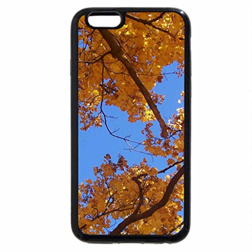 iPhone 6S Case, iPhone 6 Case (Black & White) - The Look Of Autumn
