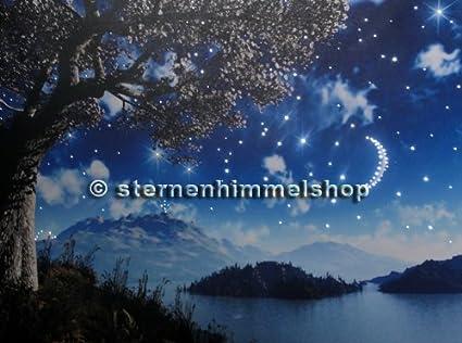 Cielo Estrellas Fibra Óptica Led Iluminación 200 Puntos de ...