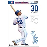 Kansas City Royals Official MLB 11 inch x 17 inch Car Window Cling Decal by Wincraft