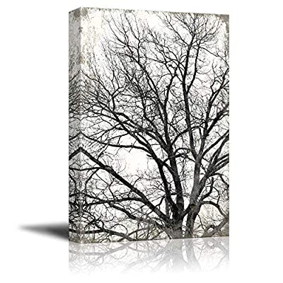 Tree on Rustic Background 32