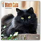 img - for Black Cats 2018 12 x 12 Inch Monthly Square Wall Calendar with Foil Stamped Cover, Animals Cats book / textbook / text book
