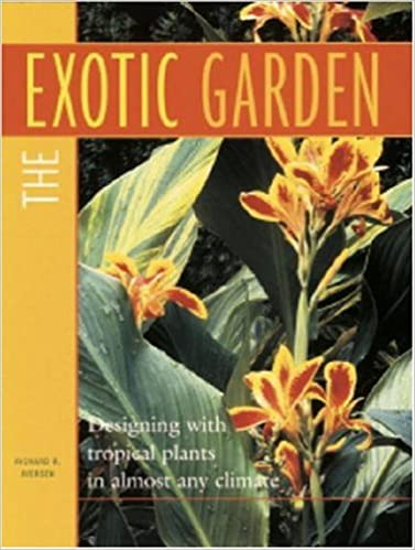 The Exotic Garden Designing With Tropical Plants In Almost Any