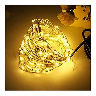 LED String Lights,WILAZB Waterproof Decorative Lights for Bedroom Patio Garden Gate Yard Parties Wedding