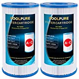 POOLPURE Type A or C (29000E/59900E) Replacement