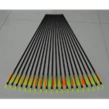 Golden Power Fiberglass Practice/hunting Arrows Point for Compound Bow