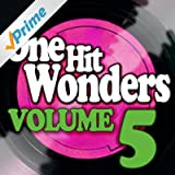 One Hit Wonders - Vol. 5
