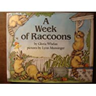A Week of Raccoons