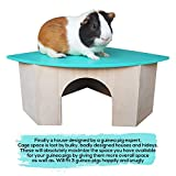 Piggies Choice The Space House All Natural Large Wooden Corner Hideout Guinea Pig and Bunny Hut