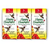 EZNectar (3 Piece) - 101.4 FL Ounce Total, All Natural, Sugar & Water only, Ready-to-Use Hummingbird Food-Nectar