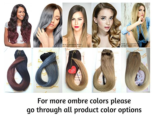 Tressmatch 20-22 Remy (Remi) Human Hair Clip in Extensions Ombre/dip Dye Brunette/Dark Brown to Caramel Honey Blonde Full Head Set 10 Pieces(pcs) [Set Weight:5.3oz/152grams]