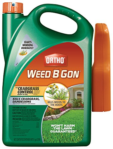 Ortho B Gon MAX Plus Crabgrass Control RTU Trigger Weed Killer