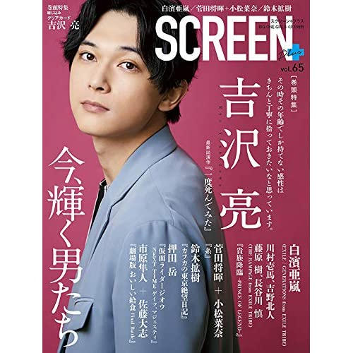 SCREEN plus vol.65 表紙画像