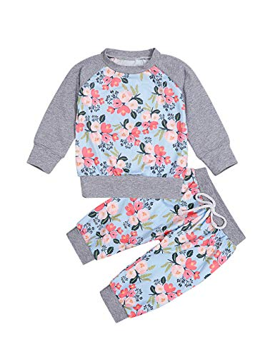 Toddler Girls Clothes Printed Flower Long Sleeve Tops Sweatshirt Floral Pants Outfit Set Gray -