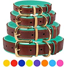 """CollarDirect Leather Dog Collar Brass Buckle Soft Padded Puppy Small Medium Large Red Pink Blue Green Purple Yellow (Neck Fit 15""""-17"""", Mint Green)"""