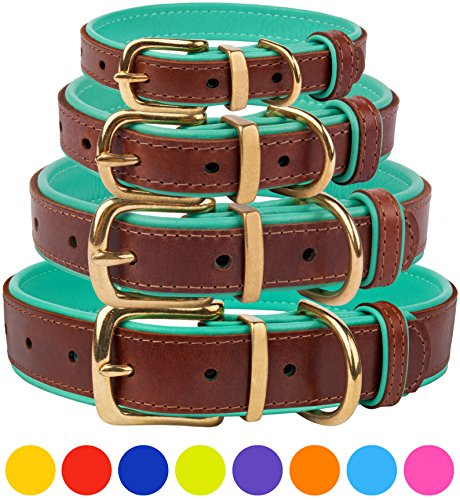 CollarDirect Leather Dog Collar Brass Buckle Soft Padded Puppy Small