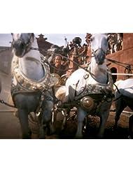 Ben Hur classic chariot race Charlton Heston and horses 8x10 Promotional Photograph