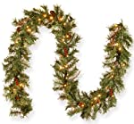 National Tree 9 Foot by 10 Inch Glistening Pine Garland with Berries, Cones, Twigs and 50 Clear Lights (GN19-300-9A-1)