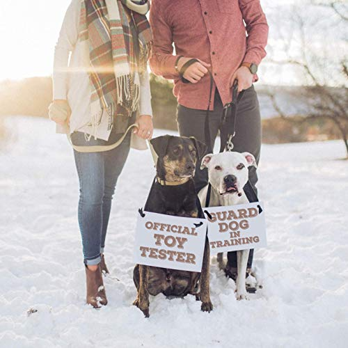 Baby Announcement for 2 Dogs | Set of 2 Pregnancy Reveal Signs | Dog Parents | Official Toy Tester + Guard Dog In Training | White Paper Greige Ink Black Ribbon ()