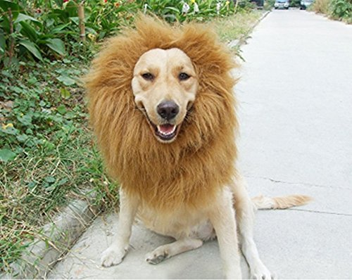 6MILES 1 Pcs Light Brown Adjustable Washable Comfortable Funny Lion Mane Wig with Ears for Dog and Cat Costume Pet Fancy Hair Clothes Dress for Halloween Christmas Easter Festival Party]()