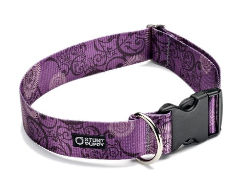 Stunt Puppy Croakies Kahuna Big Dog Collar, 1.5 Inch, Filigree Plummy