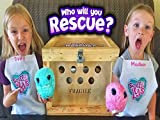 Rescued Crate Creatures! We Found Them Scruffy And Make Them Fluffy! Scruff A Luvs Toy Unboxing!