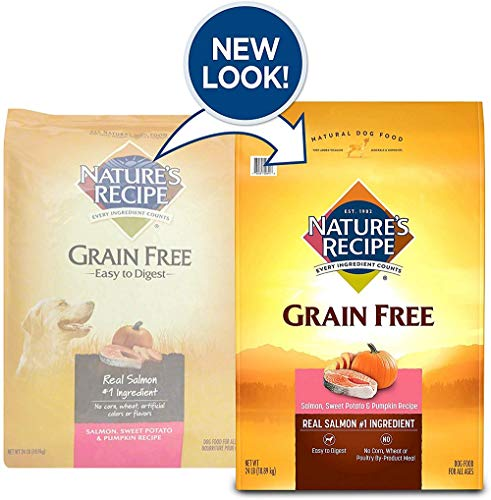 Nature's Recipe Grain Free Salmon, Sweet Potato & Pumpkin Recipe Dry Dog Food, 24 Pounds, Easy to Digest