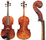 D Z Strad Model 700 Viola 15'' Outfit with Bow, Helicore Strings, Bow, Shoulder Rest, and Rosin. 15  Inch