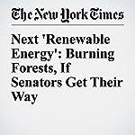 Next 'Renewable Energy': Burning Forests, If Senators Get Their Way | Eduardo Porter