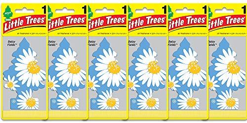 Air Daisy Freshener - Little Trees Daisy Fields Air Freshener (Pack of 6)