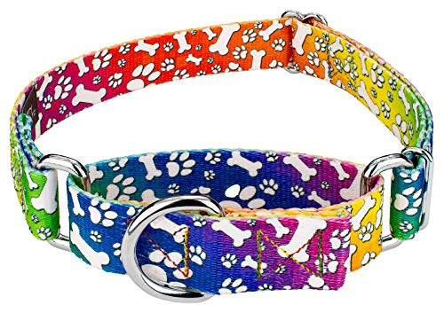 Country Brook Petz | Trippy Doggo Martingale Dog Collar - Extra - Collar Rainbow Leather