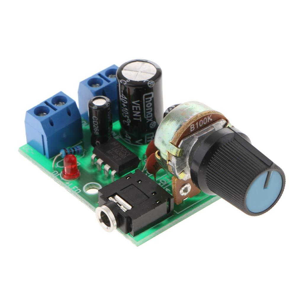 FLAMEER Einkanal Channel Digital Audio Stereo-Power Verst/ärker Board 0,5-10W DC3-12V