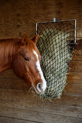 Hay Chix® Slow Feed Hay Net by for [Horse and Livestock health, hay feeder, hay net, slow feed hay net] Save your time, hay and money! Free Up Feeder (1 1/4'' Slow Feed) by Hay Chix® (Image #3)