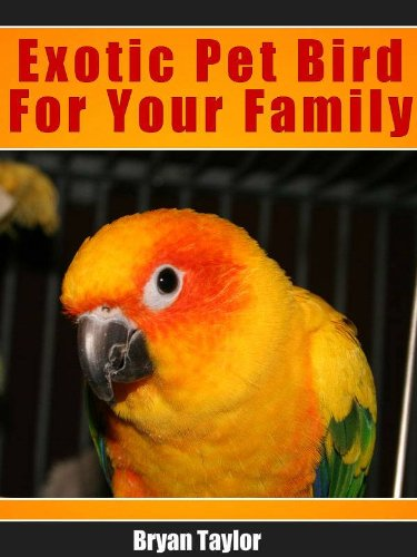 Exotic Pet Bird and Your Family