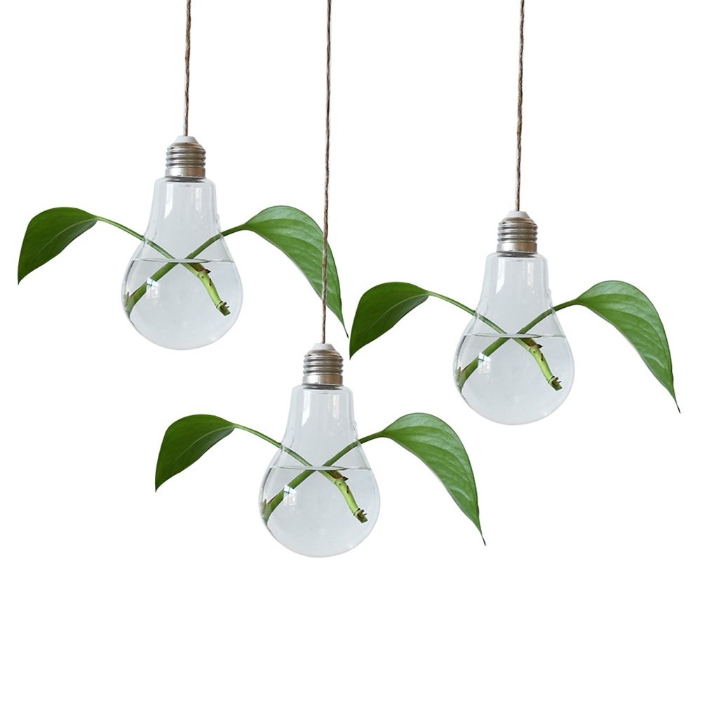 Exttlliy 3 Pack Hanging Glass Light Bulb Shape Plant Terrarium Flowers Indoor Plants Vase Perfect for Home Decor