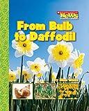 From Bulb to Daffodil, Ellen Weiss, 0531185346