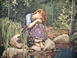 """DaDa Bedding Fairy Girl Forest Rococo French Country Lake Pond Motif Tapestry Wall Hanging Décor - 28"""" x 34"""""""