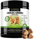 PetHonesty GrassGreen Grass Burn Spot Chews for Dogs – Dog Pee Lawn Spot Saver Treatment Caused by Dog Urine – Cranberry, Apple Cider Vinegar, DL-Methionine Grass Treatment Rocks – 90 Chew Treats Review