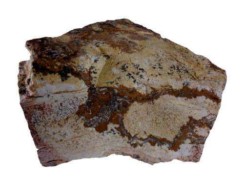 1 kg Coloradorock 10-25cm, Dekoration für Aquarien und Terrarium Aquariumpflanzen.net