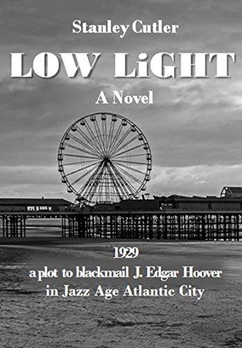 Low Light: A Novel (Dave Levitan Mysteries Book 1)