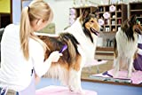 Soft Pet Brush by Hertzko - For Dogs and Cats