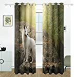 White Swiss Shepherd Dog Looking Back Blackout Curtain Top Insulation Compartment Bedroom Living Room Children's Room 55W x 84L Inches, 2 Panels 8