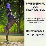 COLLAR Professional Dog Training Equipment and